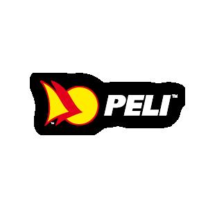 Peli+iPad+Charging+Case
